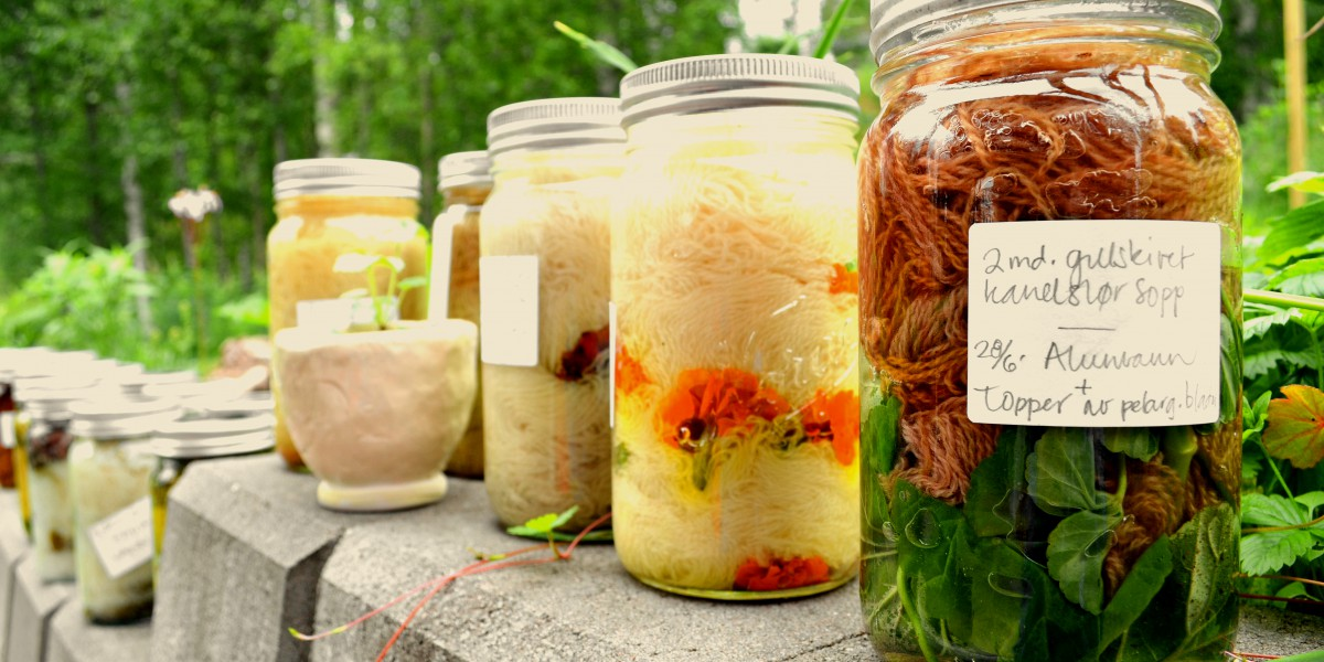 På småbruket i Julussdalen lever de tett på naturen. Her dyrker de også sine egne grønnsaker, urter og poteter. De farger også sitt eget garn på disse gamle Norgesglassene.